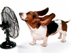 Вентиляторы системы охлаждения сварочных инверторов